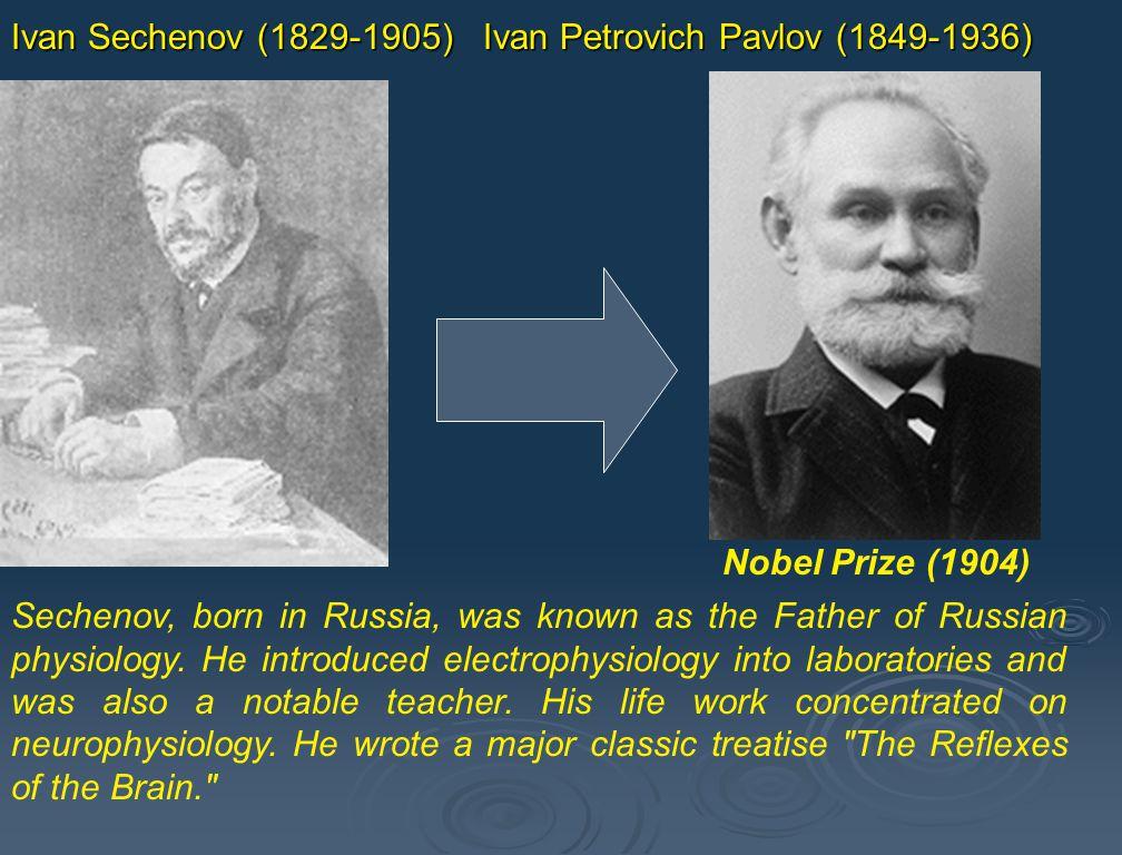 Ivan Sechenov (1829-1905) Ivan Petrovich Pavlov (1849-1936) Nobel Prize (1904)