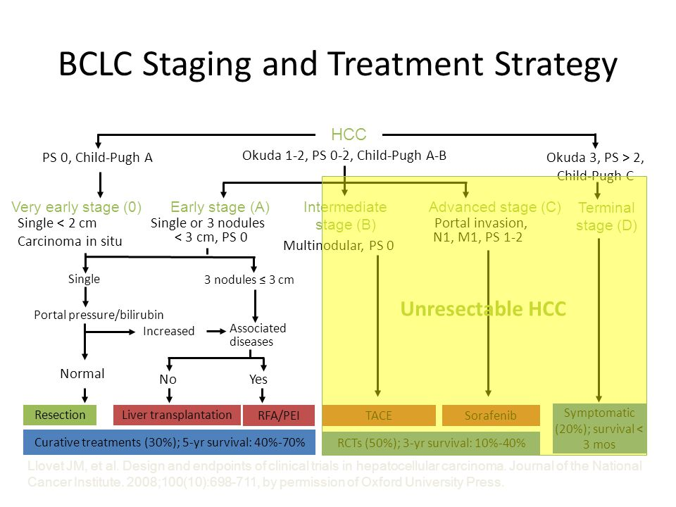 BCLC Staging and Treatment Strategy