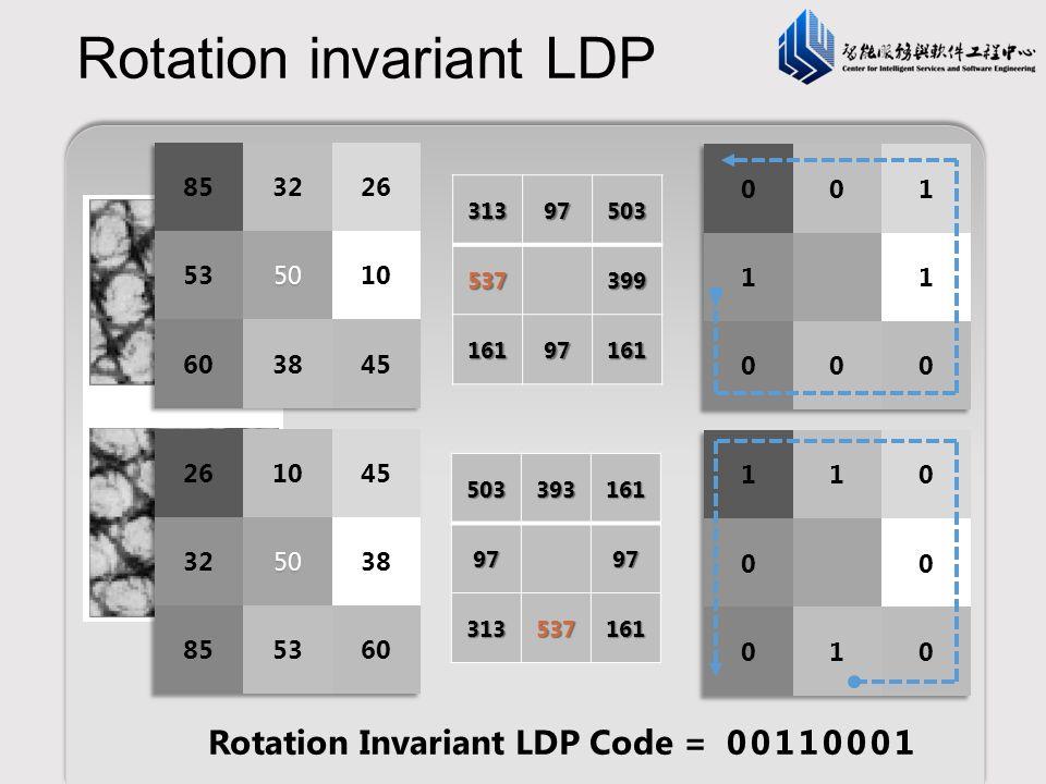 Rotation invariant LDP