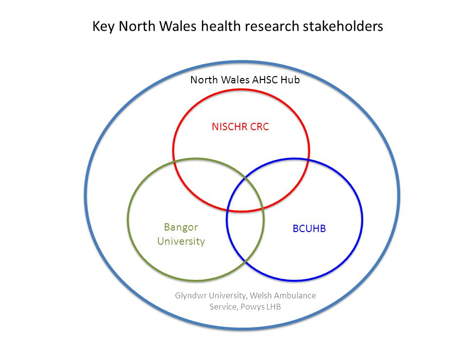 Key North Wales health research stakeholders
