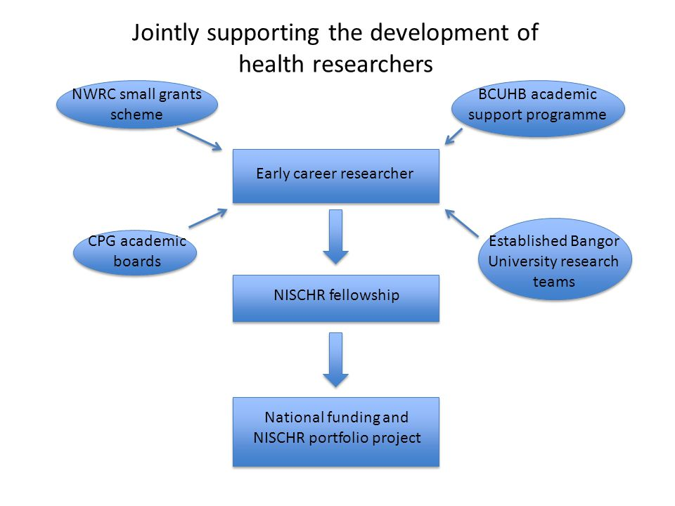 Jointly supporting the development of health researchers