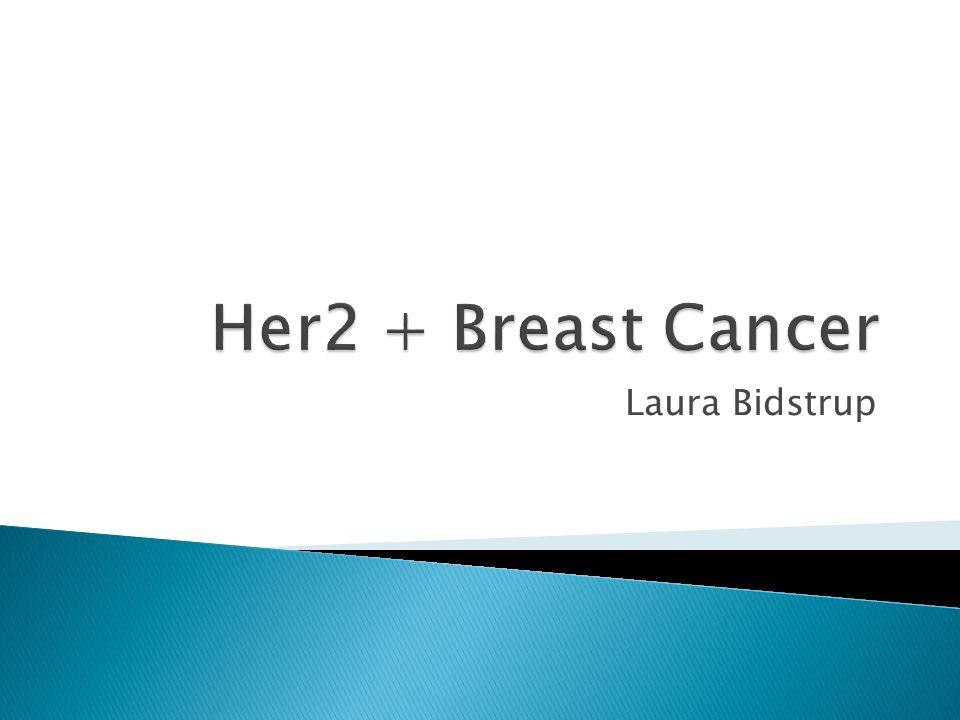 Her2 + Breast Cancer Laura Bidstrup