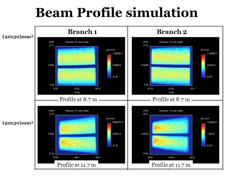 Beam Profile simulation