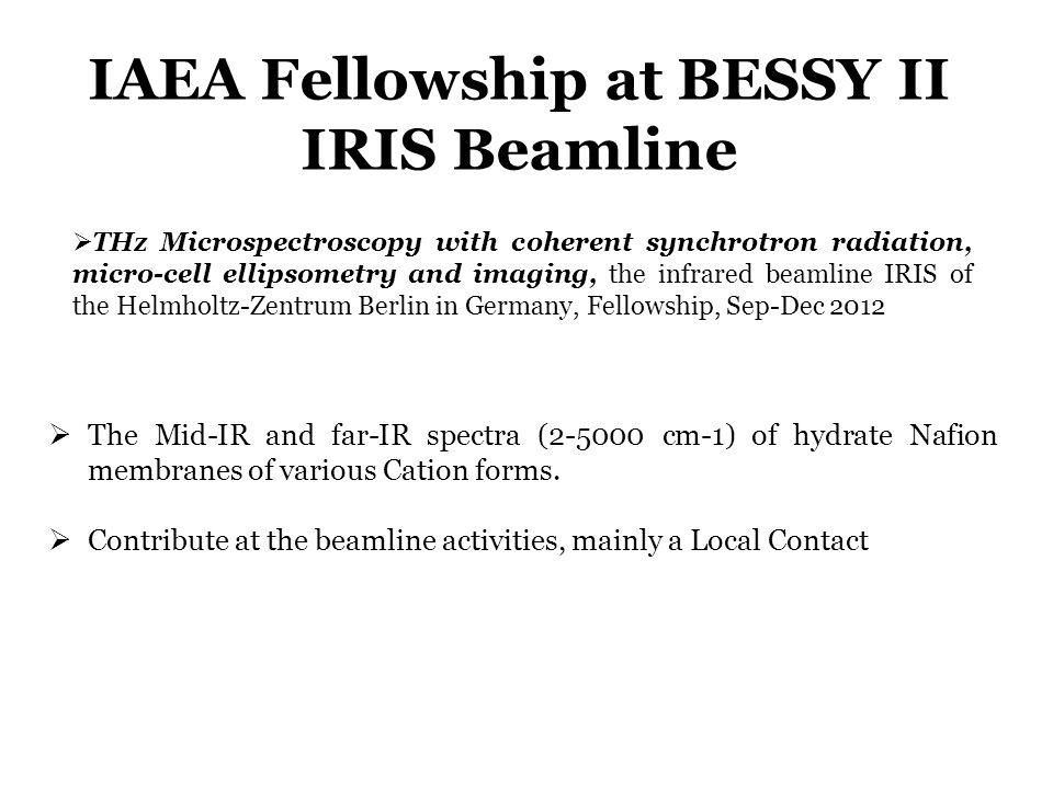 IAEA Fellowship at BESSY II IRIS Beamline