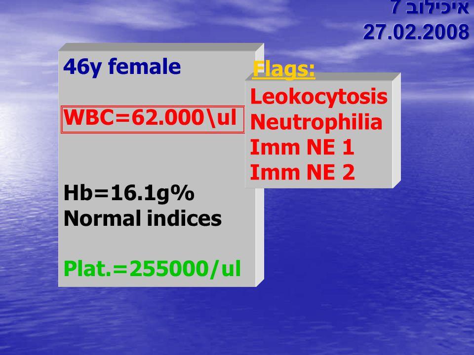 איכילוב 7 27.02.2008. 46y female. WBC=62.000\ul. Hb=16.1g% Normal indices. Plat.=255000/ul. Flags: