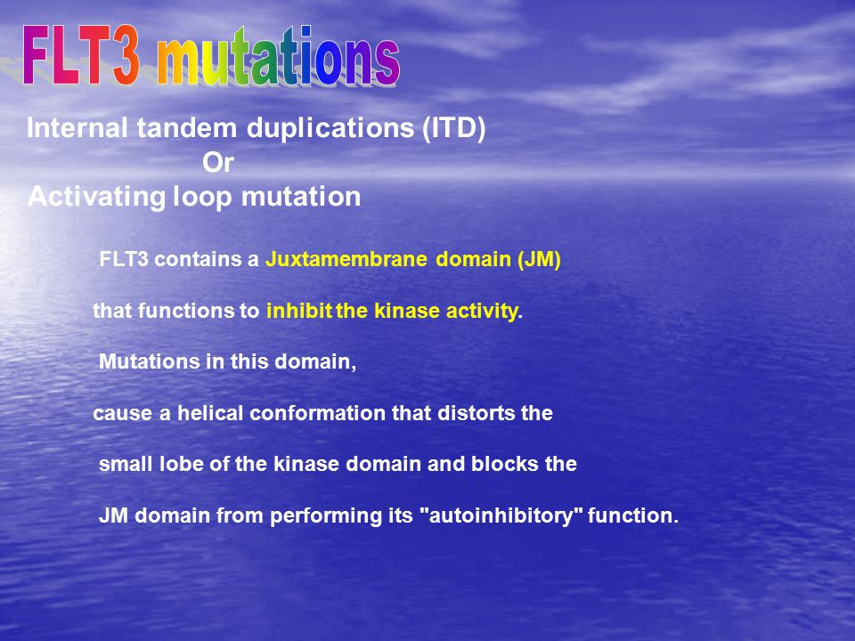 FLT3 mutations Internal tandem duplications (ITD) Or