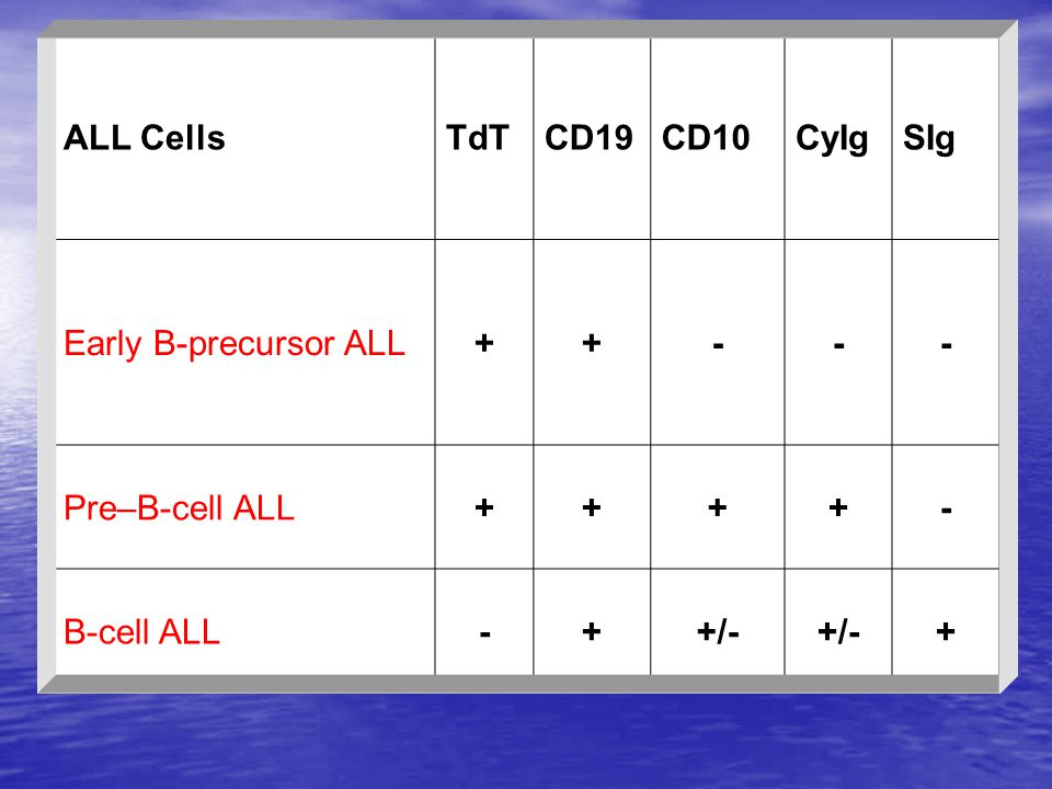 SIg CyIg CD10 CD19 TdT ALL Cells - + Early B-precursor ALL Pre–B-cell ALL +/- B-cell ALL