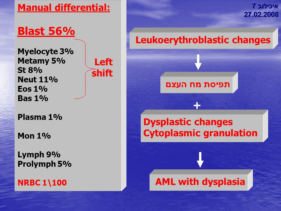 Blast 56% + Manual differential: Leukoerythroblastic changes Left