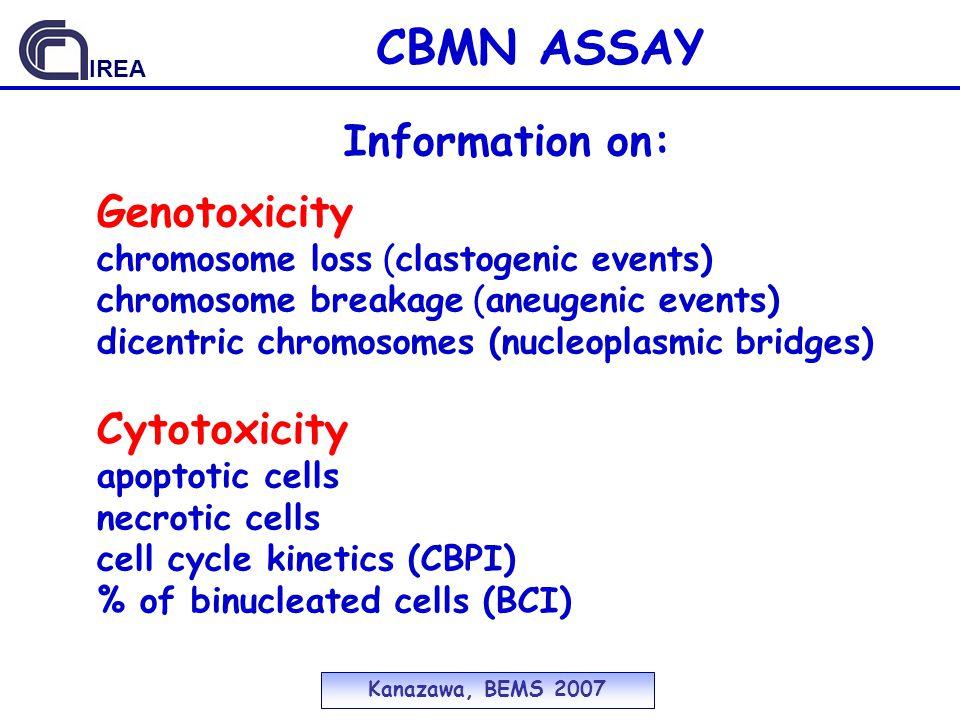 CBMN ASSAY Information on: Genotoxicity Cytotoxicity