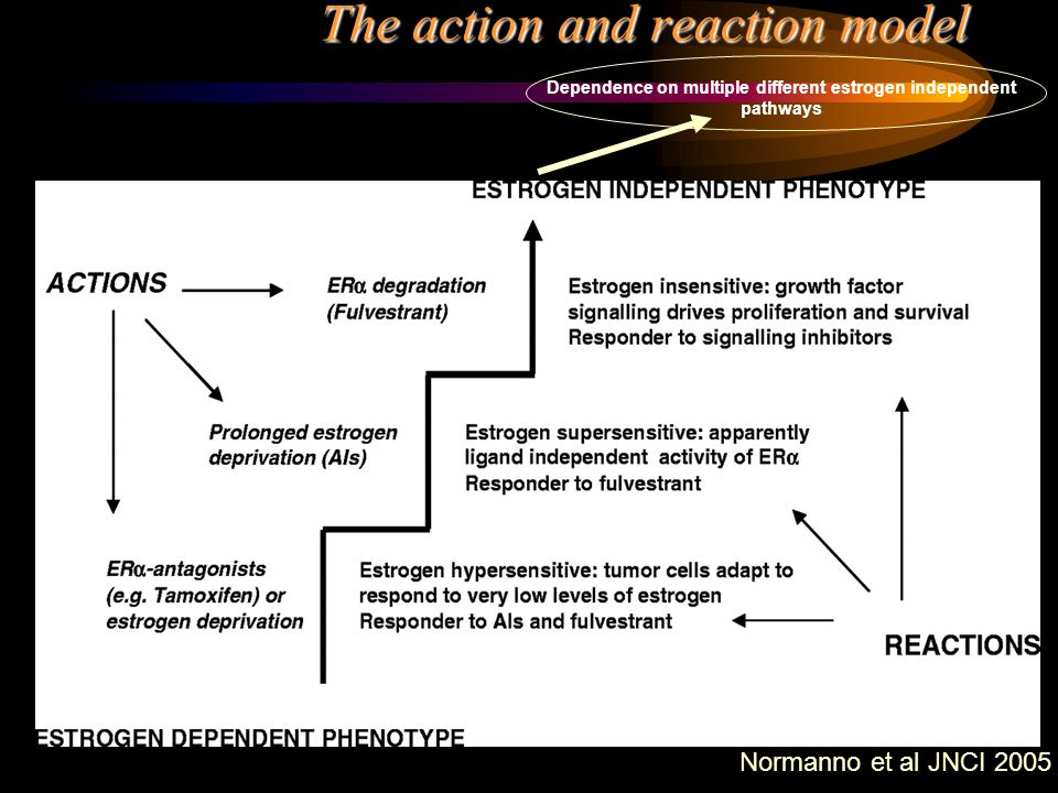 The action and reaction model