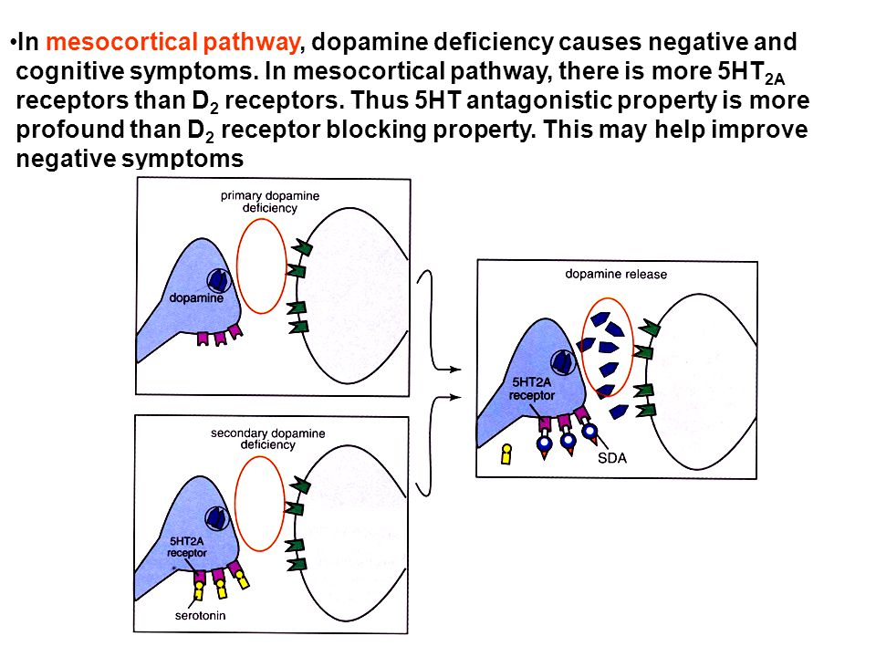 In mesocortical pathway, dopamine deficiency causes negative and