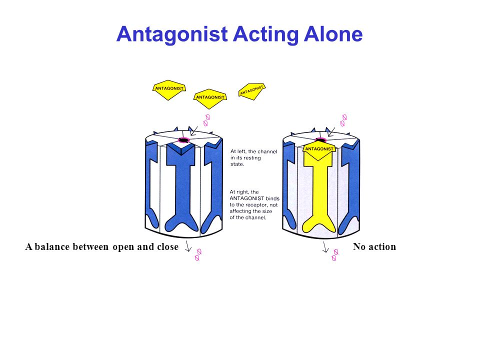 Antagonist Acting Alone