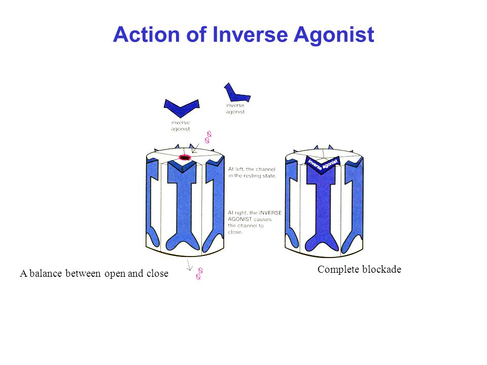 Action of Inverse Agonist