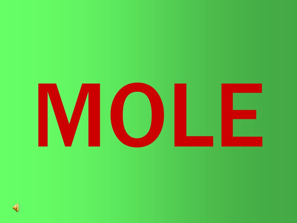 A mole is a very large quantity