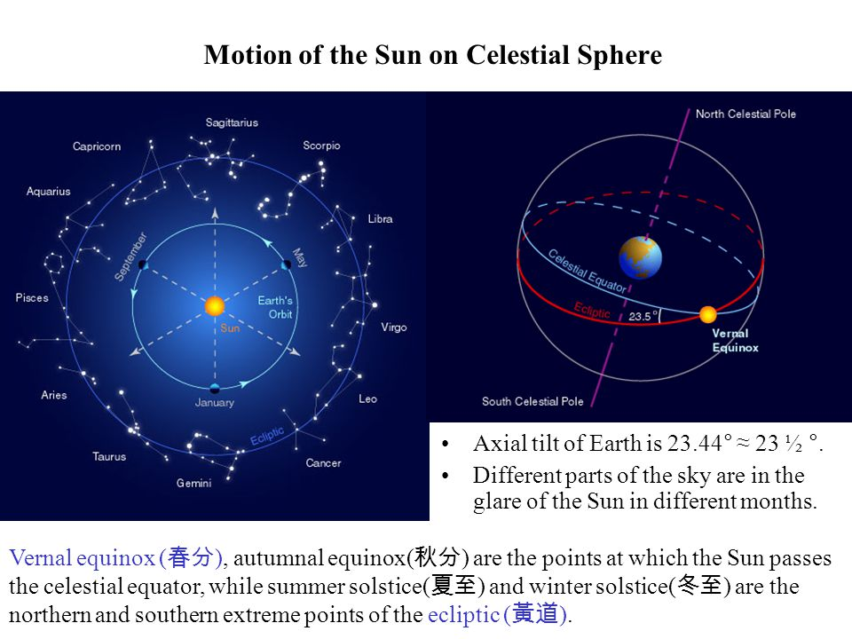 Motion of the Sun on Celestial Sphere