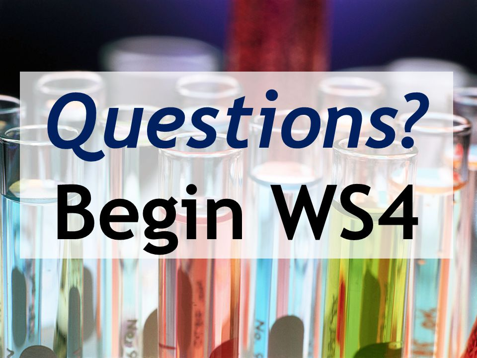 Questions Begin WS4