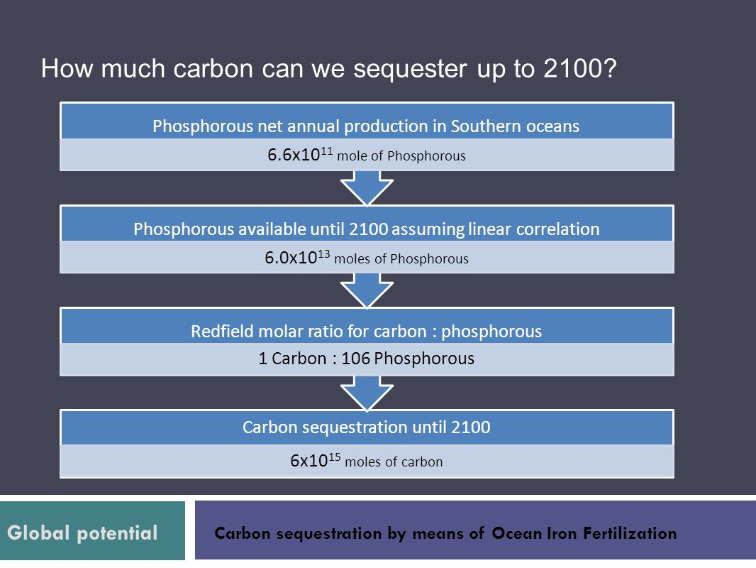 How much carbon can we sequester up to 2100