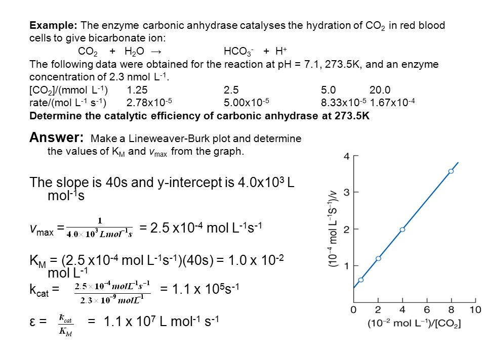 The slope is 40s and y-intercept is 4.0x103 L mol-1s
