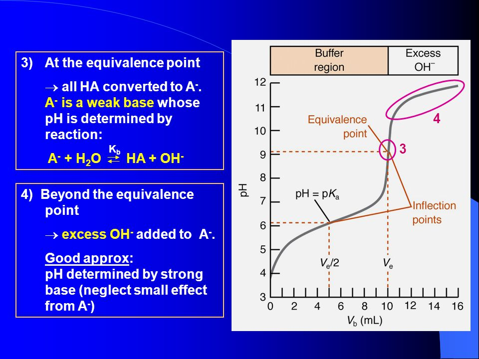 At the equivalence point