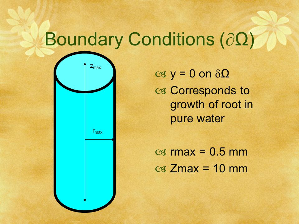 Boundary Conditions (Ω)