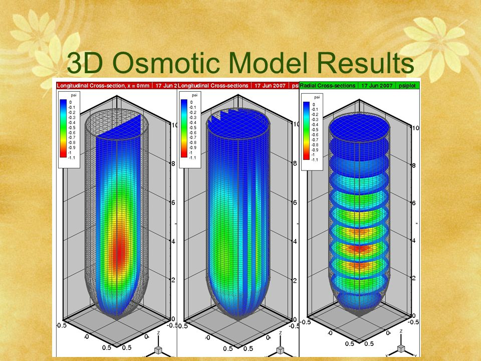 3D Osmotic Model Results