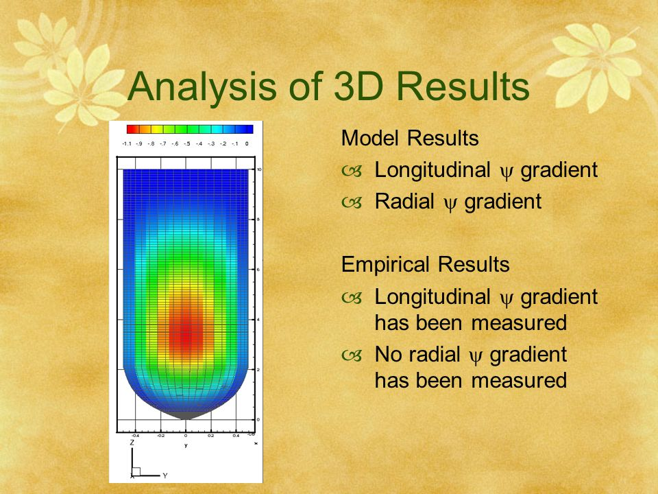Analysis of 3D Results Model Results Longitudinal  gradient
