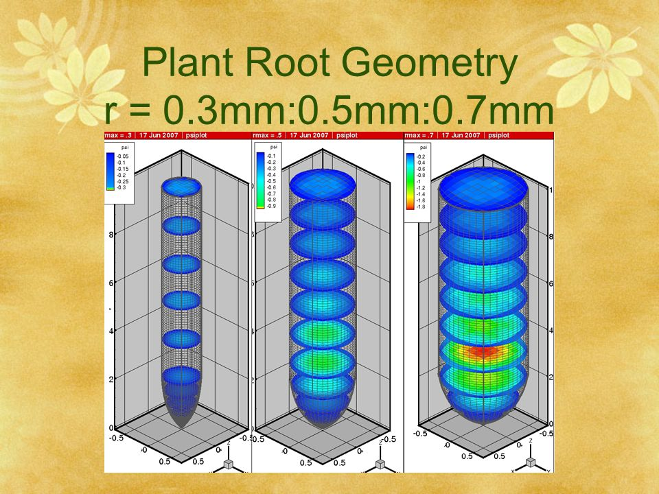 Plant Root Geometry r = 0.3mm:0.5mm:0.7mm