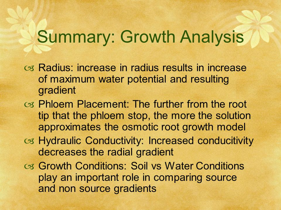 Summary: Growth Analysis