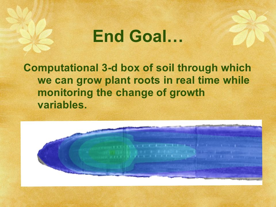End Goal… Computational 3-d box of soil through which we can grow plant roots in real time while monitoring the change of growth variables.