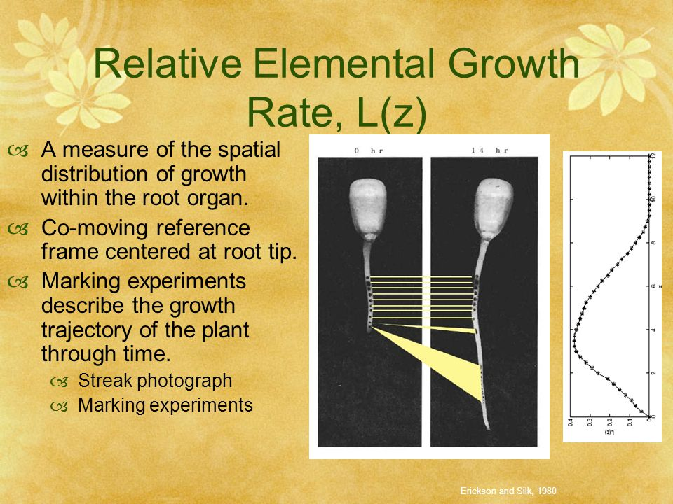 Relative Elemental Growth Rate, L(z)