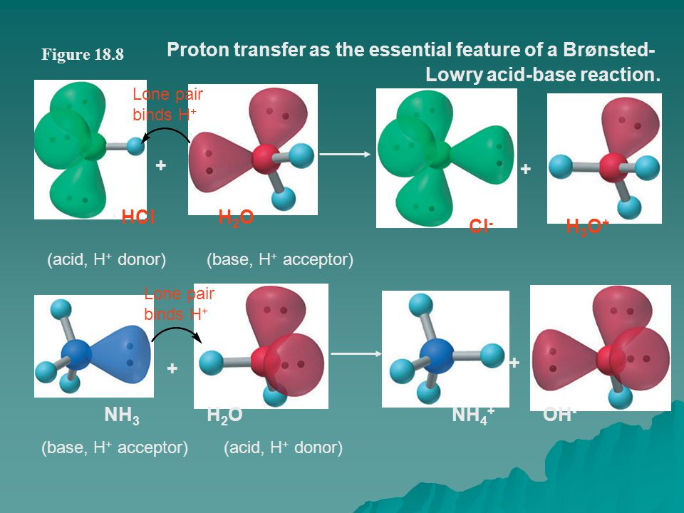 Proton transfer as the essential feature of a Brønsted-