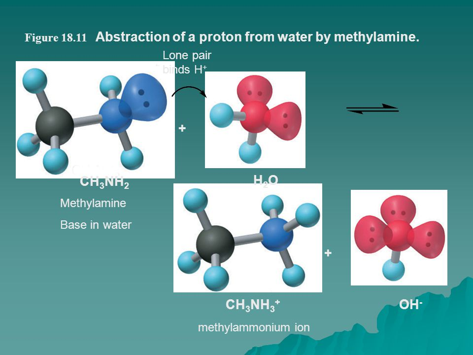 Abstraction of a proton from water by methylamine.