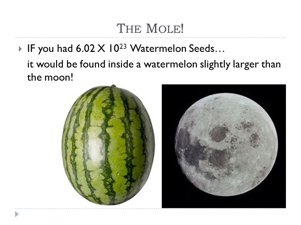 The Mole! IF you had 6.02 X 1023 Watermelon Seeds…