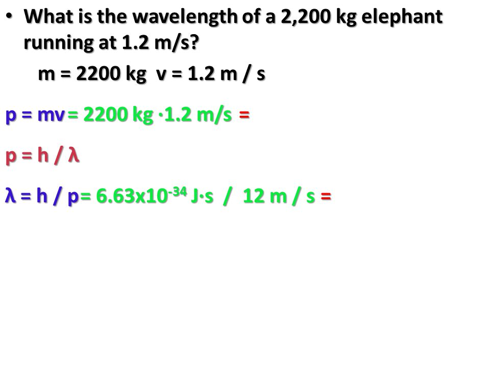What is the wavelength of a 2,200 kg elephant running at 1.2 m/s