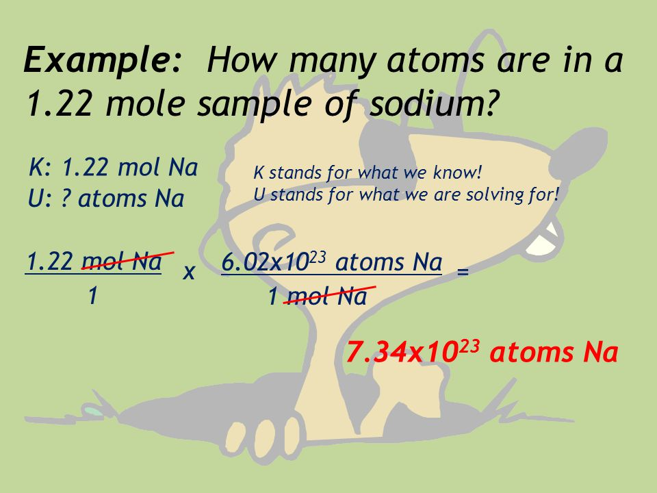 Example: How many atoms are in a 1.22 mole sample of sodium