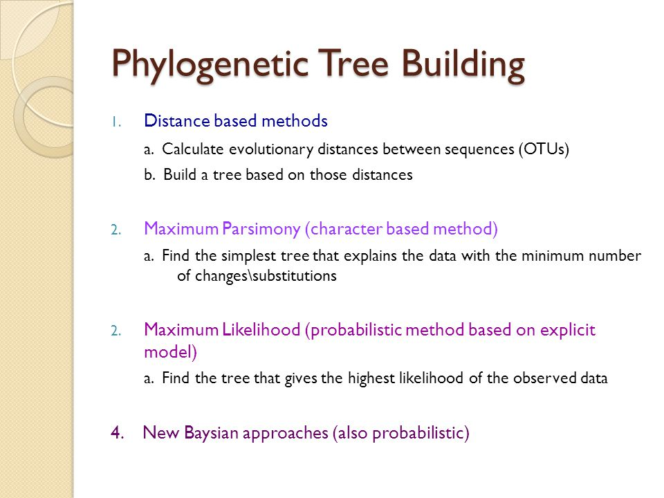 Phylogenetic Tree Building