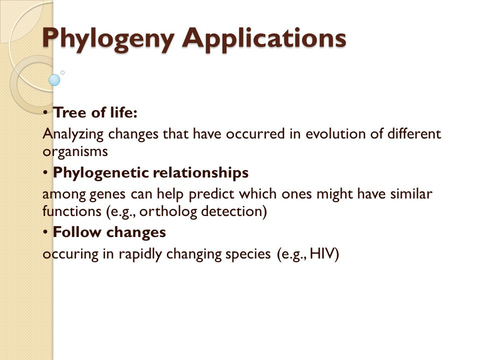 Phylogeny Applications