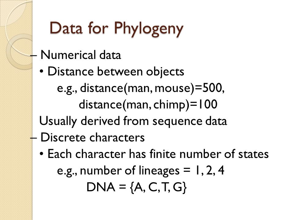Data for Phylogeny