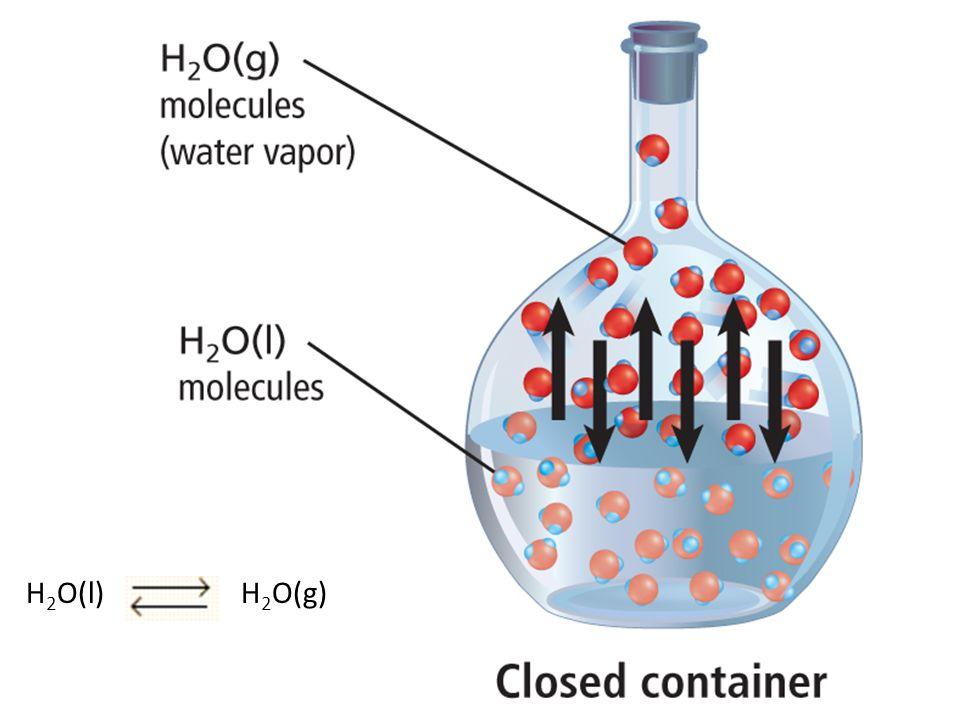 H2O(l) H2O(g)