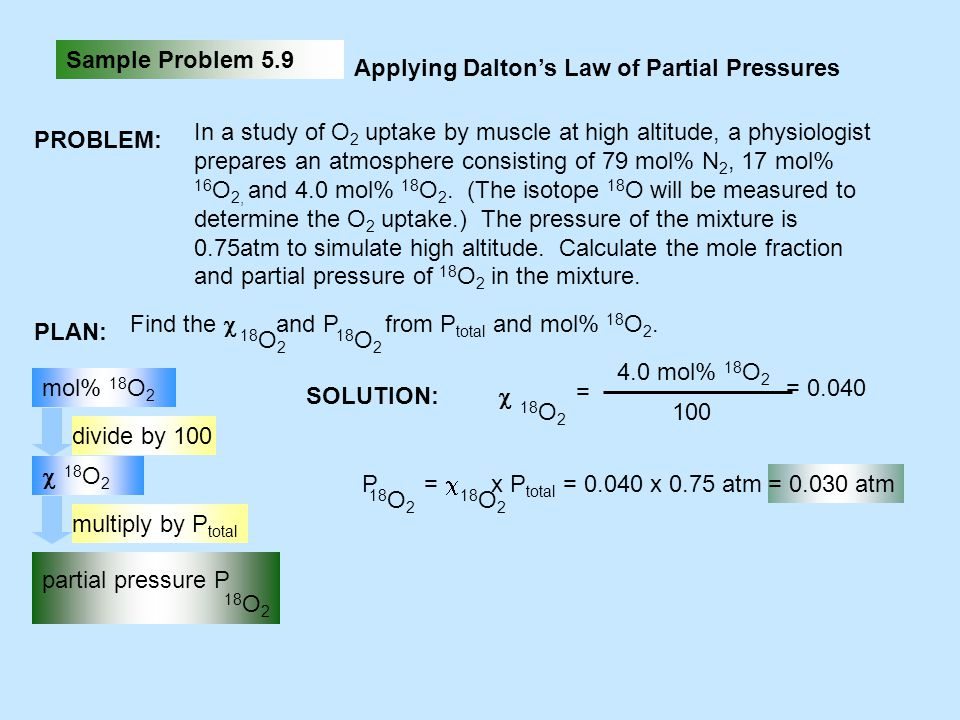 Sample Problem 5.9 Applying Dalton's Law of Partial Pressures. PROBLEM: