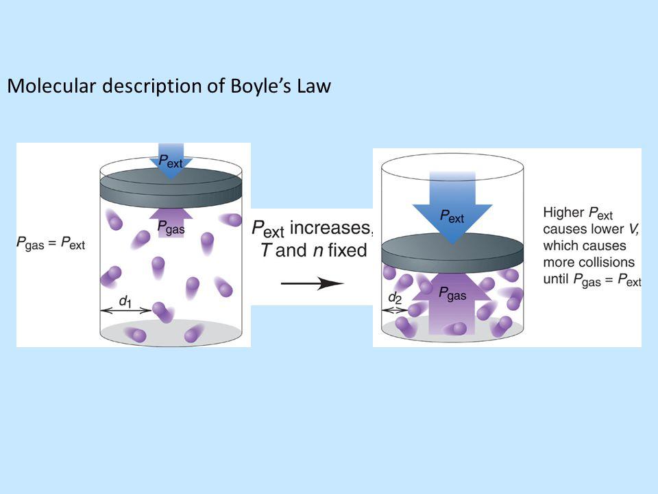 Molecular description of Boyle's Law