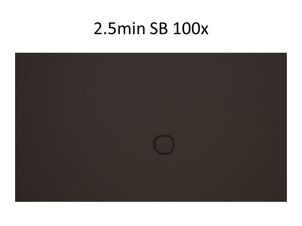 2.5min SB 100x