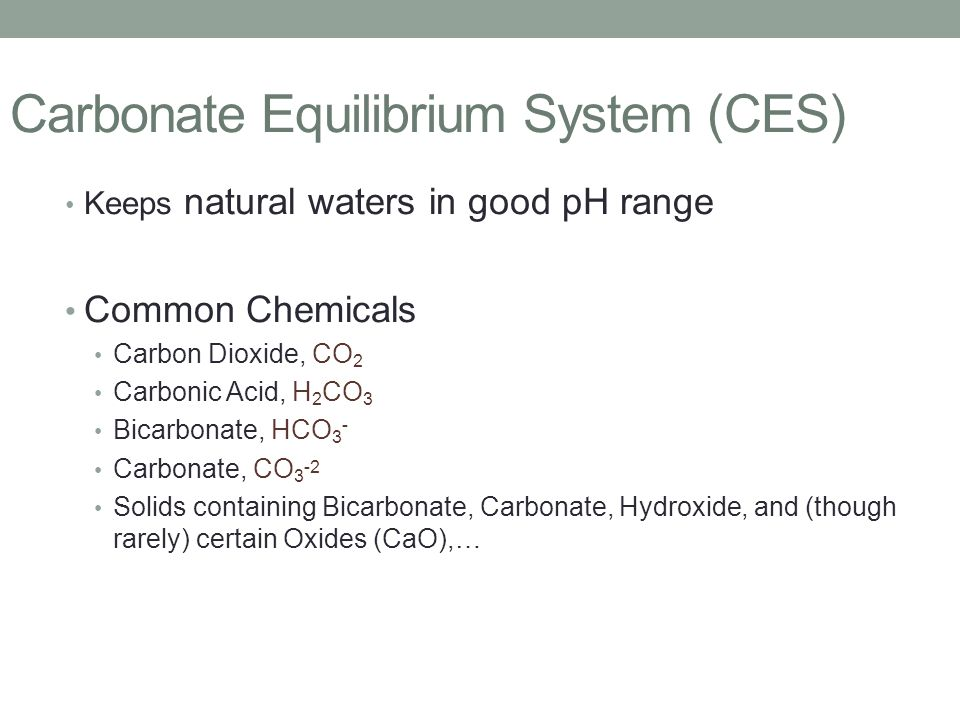 Carbonate Equilibrium System (CES)
