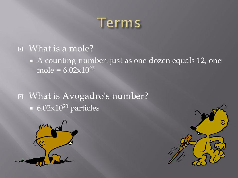 Terms What is a mole What is Avogadro s number