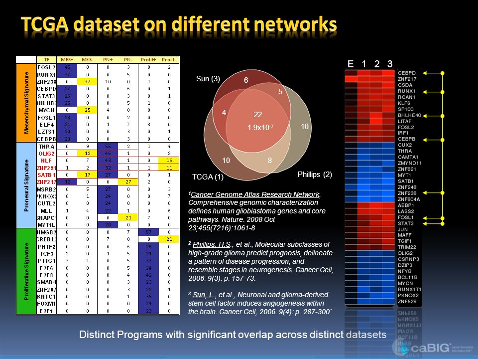 TCGA dataset on different networks
