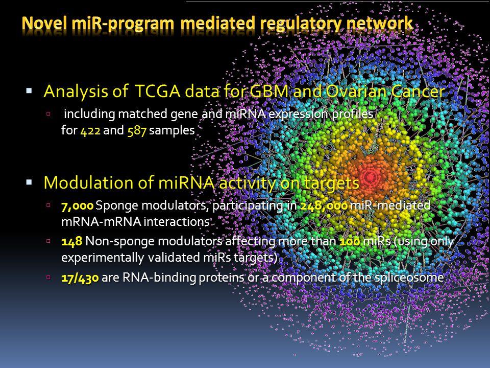 Novel miR-program mediated regulatory network