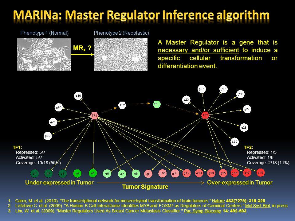 MARINa: Master Regulator Inference algorithm
