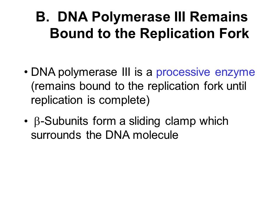 B. DNA Polymerase III Remains Bound to the Replication Fork