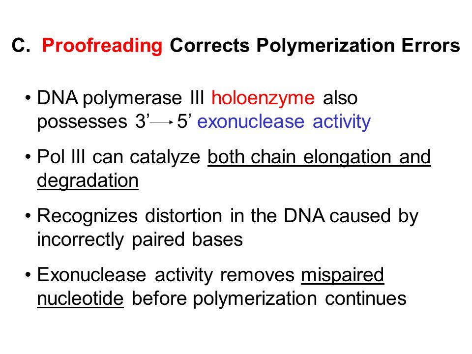 C. Proofreading Corrects Polymerization Errors