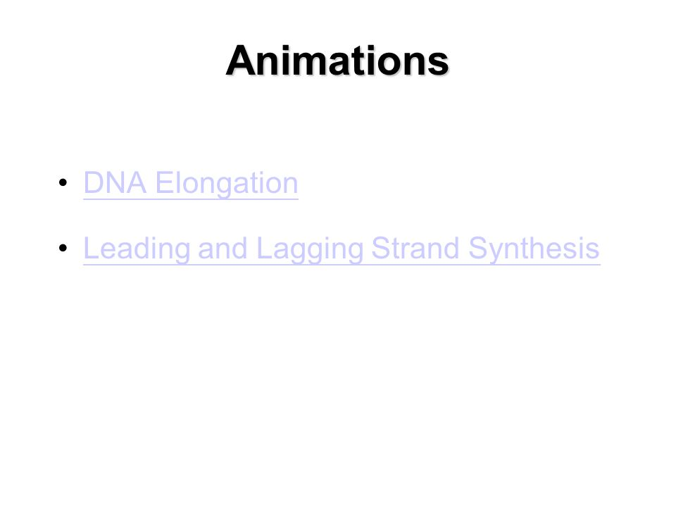 Animations DNA Elongation Leading and Lagging Strand Synthesis